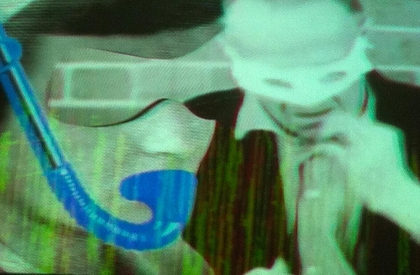 Francesca-Finni_White-Sugar_videoformes_Transnumeriques_Mons2015_Transcultures